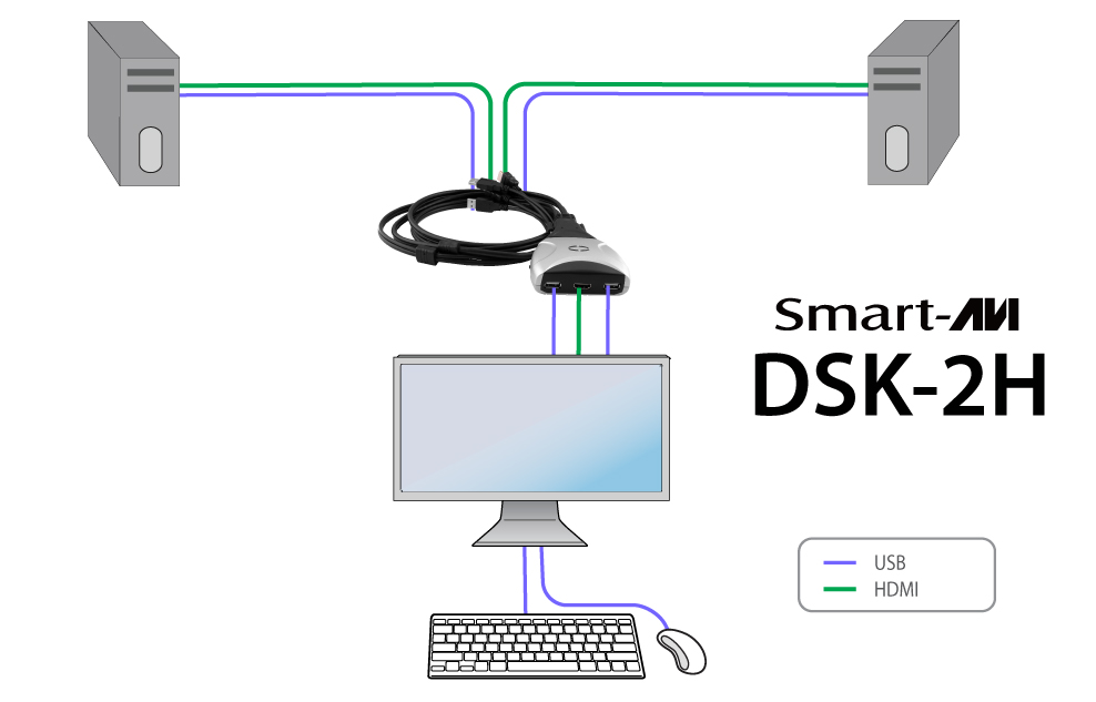 dsk2h_diagram