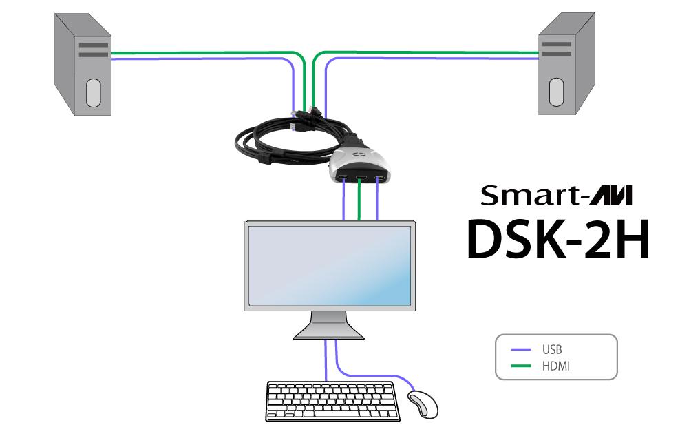 dsk2h_diagram