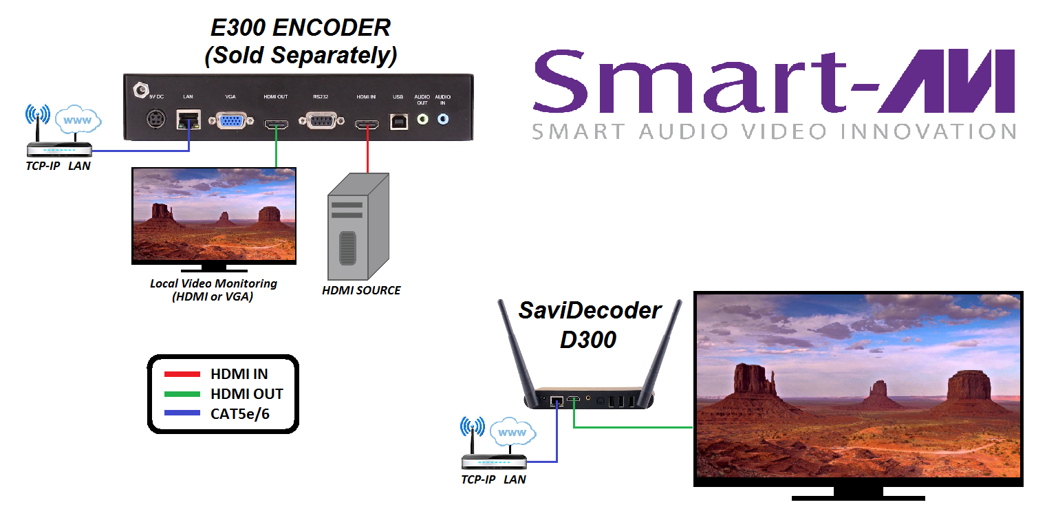 SaviStreamer D300 diagram2