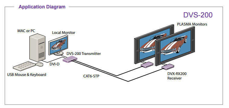 DVS-200 diagram